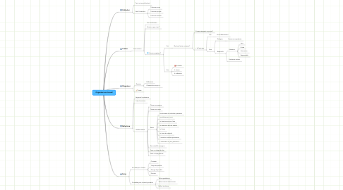 Mind Map: Organiser son travail