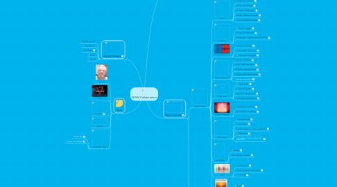 Mind Map: SENVI Collaboration
