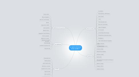 Mind Map: Le sport, miroir de notre société ?