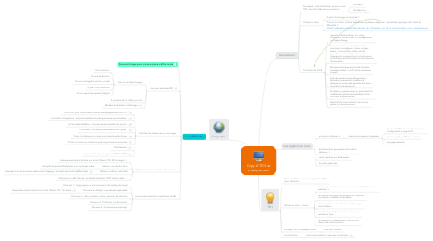 Mind Map: Copy of TICE et enseignement