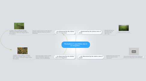Mind Map: Fluctuations in population size in an ecosystem...