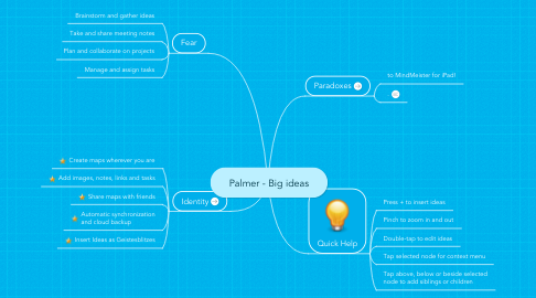 Mind Map: Palmer - Big ideas