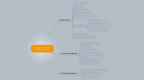 Mind Map: Core Audience DMP Customer Lifecycle