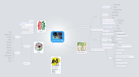 Mind Map: Ciências Naturais