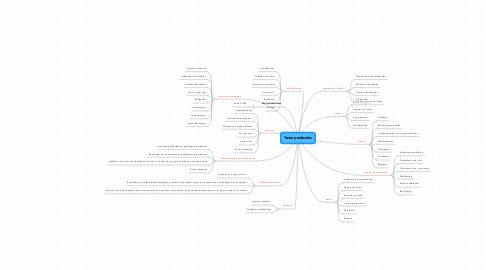 Mind Map: Yaron producties