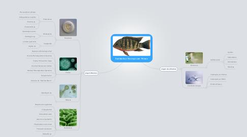 Mind Map: Sanidade e Doenças em Peixes