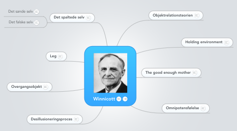 Mind Map: Winnicott