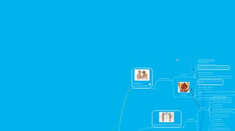 Mind Map: bases morfológicas e fisiológicas da reprodução humana