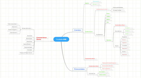 Mind Map: Cordados