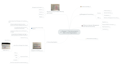 Mind Map: Chapter 1: The Accountant's Role in the Organization