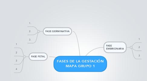 Mind Map: FASES DE LA GESTACIÓN MAPA GRUPO 1