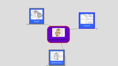 Mind Map: tronco del encefalo