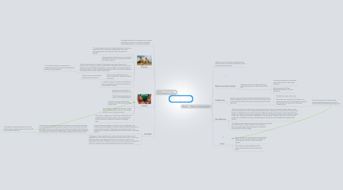 Mind Map: Laughter out of Place Chapters 6 and 7