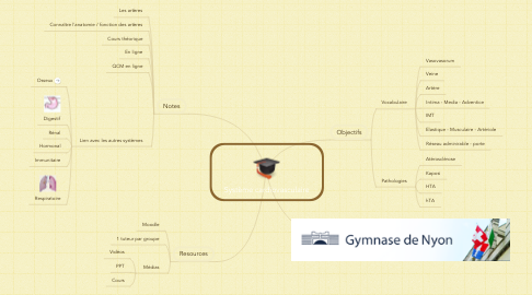 Mind Map: Système cardiovasculaire