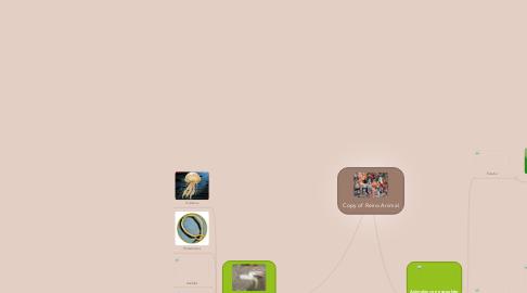 Mind Map: Copy of Reino Animal