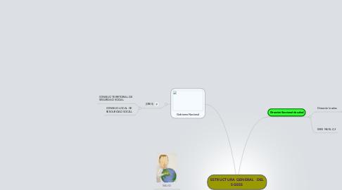 Mind Map: ESTRUCTURA GENERAL  DEL SGSSS