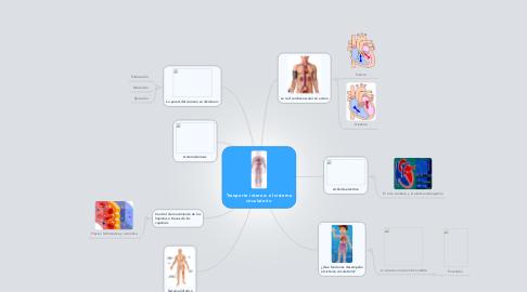 Mind Map: Tranporte interno: el sistema circulatorio