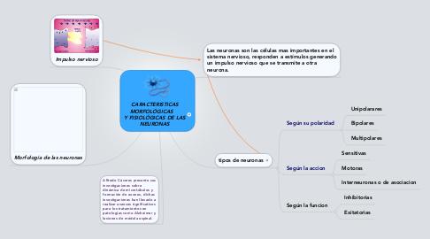 Mind Map: CARACTERISTICASMORFOLÓGICAS     Y FISIOLÓGICAS DE LASNEURONAS