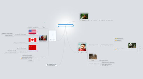 Mind Map: Who--and What--Has Rights?