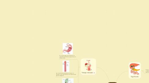 Mind Map: Digestión