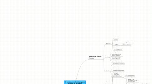 Mind Map: Screencasts als medienpädagogisches Instrument zur Vermittlung von Internet Literacy