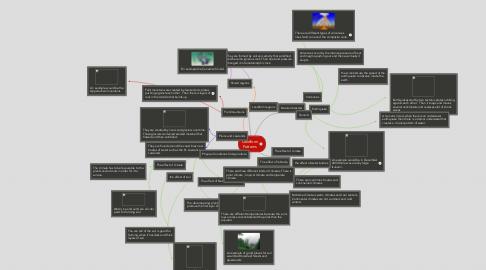 Mind Map: Landform Patterns