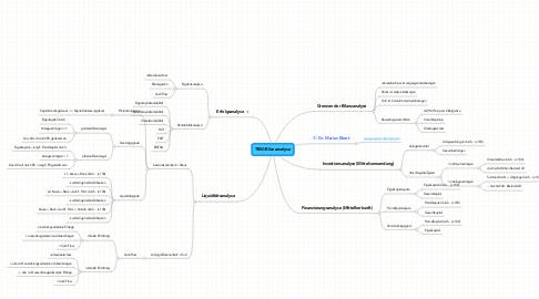 Mind Map: TBW/Bilanzanalyse