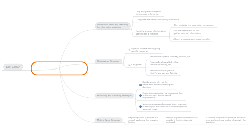 Mind Map: PIM Practice Report: Giving an Interview