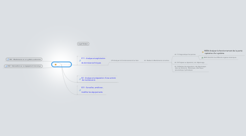 Mind Map: Bac Prof MEI