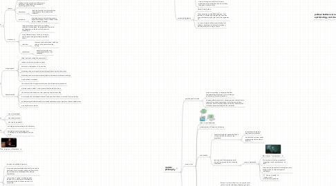 Mind Map: FFAI Epistemology and Reality