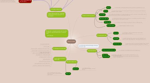 Mind Map: Мышление