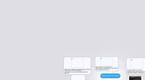 Mind Map: Природный комплекс
