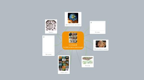 Mind Map: УСЛОВИЯ ПОЧВООБРАЗОВАНИЯ