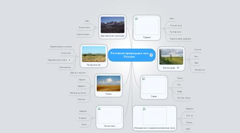 Mind Map: Растения природных зон России