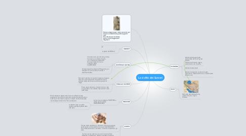 Mind Map: La civiltà dei Sumeri