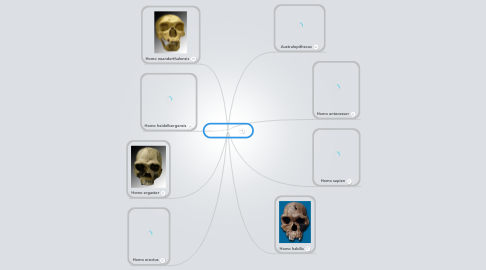Mind Map: Hominidos