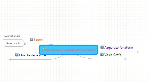 Mind Map: La consapevolezza del cantante