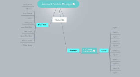 Mind Map: Assistant Practice Manager