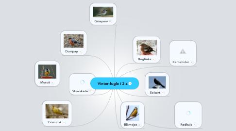 Mind Map: Vinter-fugle i 2.z
