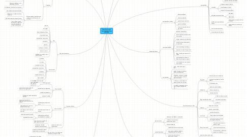 Mind Map: Dirigir Personas esComo Adiestrar Gatos(Liderazgo)