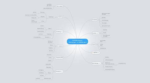 """Mind Map: SOPHIE-Gruppe:  """"Wertungen - in Erzähltexten"""""""