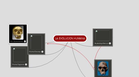 Mind Map: LA EVOLUCION HUMANA