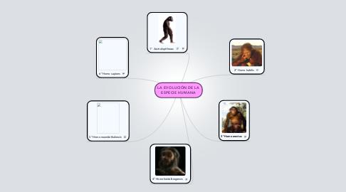 Mind Map: LA EVOLUCIÓN DE LA ESPECIE HUMANA