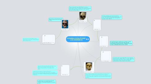 Mind Map: ESQUEMA EVOLUTIVODE LOS HOMINIDOS