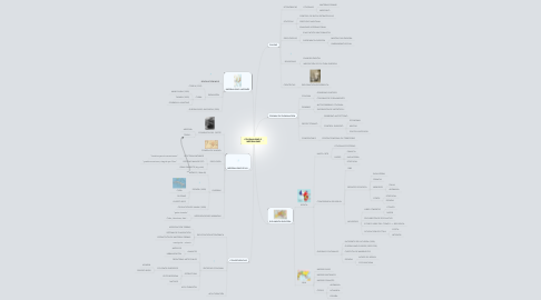 Mind Map: COLONIALISMO E   IMPERIALISMO