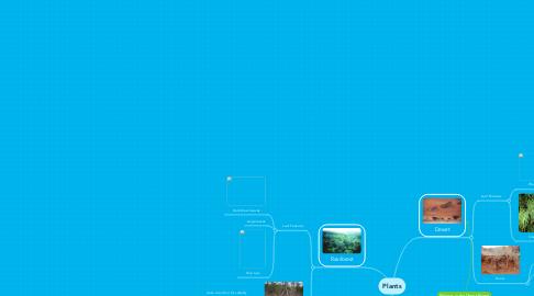 Mind Map: Plants