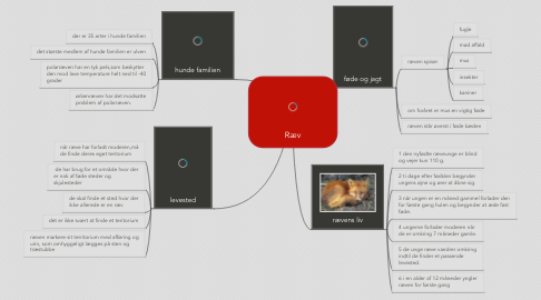Mind Map: Ræv
