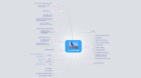 Mind Map: EL CONDOR