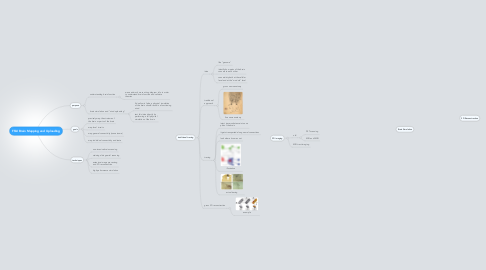 Mind Map: FFAI Brain Mapping and Uploading