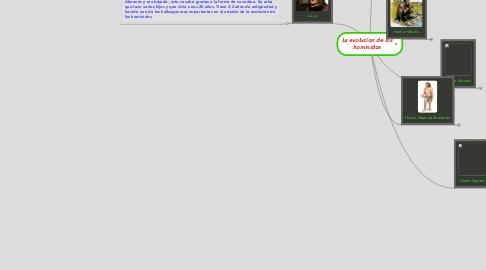 Mind Map: La evolucion de los hominidos